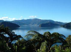 Queen Charlotte Sounds, Marlborough, New Zealand