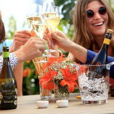 www.BiZiDEX.com - Cavas Codorniu Elaboración de Cava y Vinos -Sant Sadurní d'Anoia (Barcelona)
