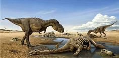 Majungasaurus and Rapetosaurus.  Art by Raul Martin. Majungasaurus is a genus of abelisaurid theropod dinosaur that lived in Madagascar from 70 to 66 million years ago, at the end of the Cretaceous Period. The genus contains a single species, Majungasaurus crenatissimus. Rapetosaurus is a genus of sauropod dinosaur that lived in Madagascar from 70 to 66 million years ago, at the end of the Cretaceous Period.