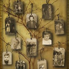 a modern..genealogical tree