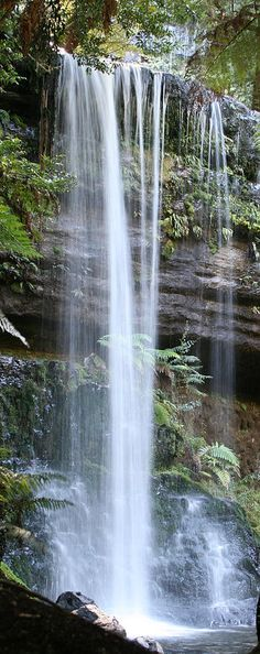 Russell Falls - Australia http://www.reservationresources.com/