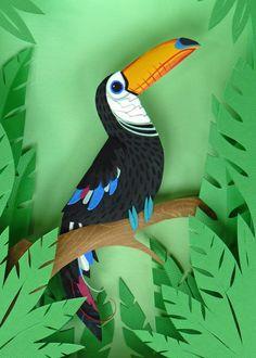 Paper Toucan Print