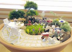 Miniature garden - wold love to make somethng like this.