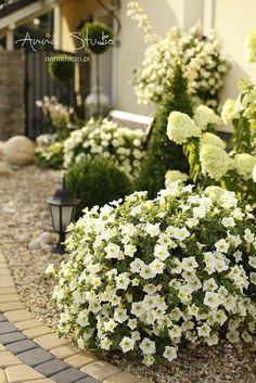 Garden Design, House Design, Backyard Landscaping, Beautiful Gardens, Landscape, Nature, Plants, Furniture, Gardens