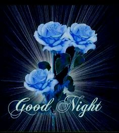 ❥●❥ Good Night Blessings, Good Night Wishes, Good Night Sweet Dreams, Morning Blessings, Good Night Moon, Good Night Image, Good Morning Good Night, Day For Night, Good Night Messages