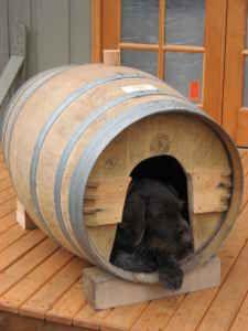 ONLINE PEDIGREES :: [221455] :: WINE BARREL DOG HOUSE.