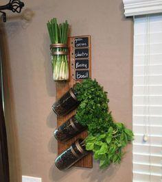 Avoir les herbes aromatiques à portée de main : dans des jarres