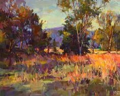 Tom Nachreiner - Colorful_Fields