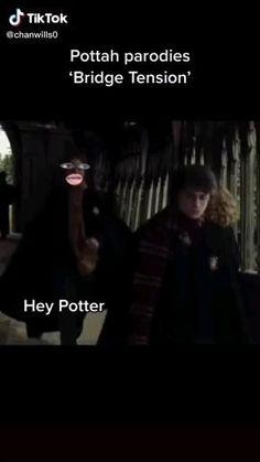 Harry Potter Parody, Harry Potter Imagines, Harry Potter Puns, Harry Potter Feels, Harry Potter Aesthetic, Harry Potter Cast, Harry Potter World, Harry Potter Theories, Harry Potter Wallpaper