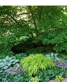 how to design ground cover plantings for the shade garden — A Way to Garden.  I LOVE the blend of colors and textures.