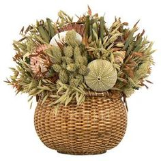 """Assorted dried grass and seashell arrangement in wood container.  Product: Floral arrangementConstruction Material: Natural caspia, avena, bamboo, phalaris, assorted seashells, and woodColor: Green Dimensions: 10"""" H x 9"""" W x 6"""" D"""