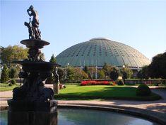 jardins do palacio de cristal - Pesquisa Google