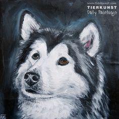 Ölportrait, Hundeportrait, Dogpainting in Oil on canvas, Huskie