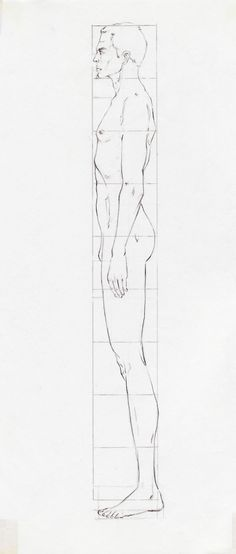 Practice sheet for learning to draw male models/ fashion illustrations