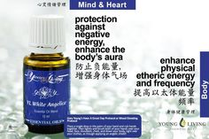 Young Living White Angelica https://www.youngliving.com/signup/?isoCountryCode=US&sponsorid=1704613&enrollerid=1704613