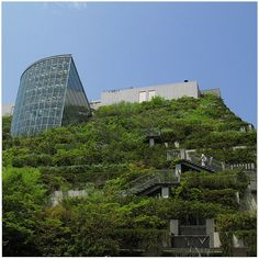 Modern architects and designers understand the health benefits of buildings incorporating plants so they've built structures to be more conducive to vegetation. Green Architecture, Contemporary Architecture, Urban Heat Island, Residential Building Design, Leed Certification, Modern Architects, Diy Greenhouse, Green Building, Sustainability