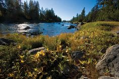 10 miles of the Blackfoot River flow through The Resort at Paws Up's 37,000 acres.