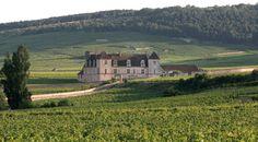 Articles of SOMMELIERS INTERNATIONAL - Château du Clos de Vougeot