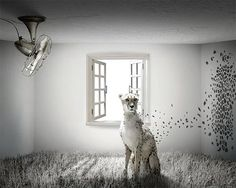 30 Far-fetched Examples of Surreal Art & Photography | Multy Shades