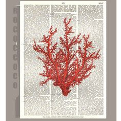 Red CORAL4 ARTWORK  printed on Repurposed Vintage by RococcoCo