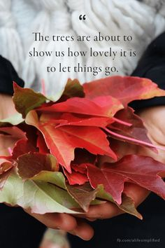 You'll want to read these fabulous fall quotes that sum up the way we feel about fall. These festive sayings about autumn will remind you of all the beauty the season has to offer from September through November. Great Quotes, Quotes To Live By, Me Quotes, Motivational Quotes, Inspirational Quotes, Quotes About Autumn, Autumn Quotes And Sayings, Quotes About Fall Season, Quotes About Thanksgiving