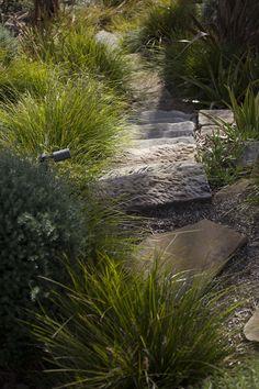 Stepping stones through our Australian native garden  at Wongophora