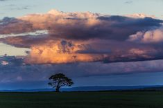 Every sky tells it's own story. A single tree sits on its own the Shropshire landscape with colourful clouds at dusk. Colorful Clouds, Single Tree, Dusk, Landscape Photography, Travel, Outdoor, Image, Beautiful, Outdoors