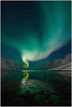 Beautiful northern lights.... You can see from many northern states ( Maine, Minnesota,Alaska)