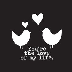 Love Birds | You're the love of my life | via @fonq.nl.nl.nl
