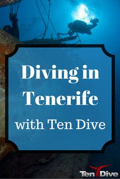 Tenerife is a popular beach resort destination but it is also a fantastic place to go diving. This is my experience diving in Tenerife with Ten Dive.