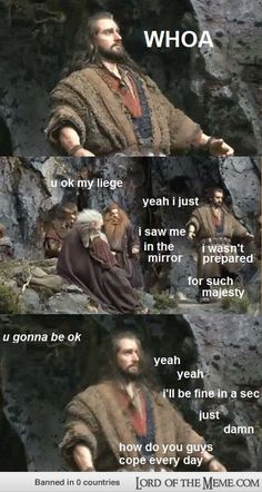 We can't cope, Thorin. We really can't. X'D // I can't stop laughing at these!