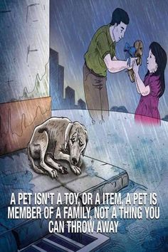 Animals And Pets, Cute Animals, Love Your Pet, Dog Training Tips, Training Videos, Brain Training, Cool Cartoons, Dog Quotes, Dog Life