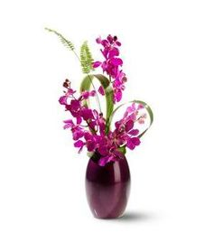 or an unexpected gift, send fresh flowers with a touch of the exotic… deep purple dendrobium orchids, arching gracefully from a matching Ming vase. Ikebana Flower Arrangement, Beautiful Flower Arrangements, Silk Flower Arrangements, Beautiful Flowers, Dendrobium Orchids, Purple Orchids, Purple Flowers, Bonsai Plante, Arte Floral