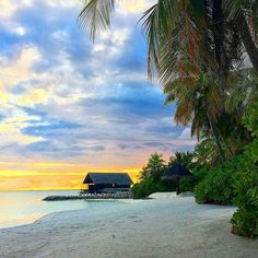 The Maldives Islands | One & Only Reethrah  Maldives @ooreethirah  @anita_meller  #holiday #island #trees #vacation #getaway #beach #sunsets #summer #sunset #summerholiday #travel #maldives #OMaldives #finditliveit #livefolk #thatsdarling #goodday #amazing #love #beautifulday  #palms #insta #escape #bliss  #ooreethi #vacation #paradise #sun