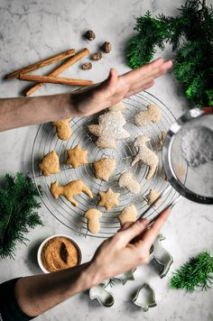 These easy vegan spice sugar cookies are like gingerbread without molasses. Made with coconut sugar and ginger, cinnamon, and nutmeg for a holiday flavour. Christmas Dishes, Vegan Christmas, Christmas Baking, Christmas Crack, Xmas Food, Christmas Parties, Christmas Treats, Christmas Recipes, Merry Christmas
