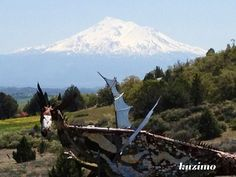 Dragon sculpture, Yreka, California  Mt Shasta and grandma's house in the background!