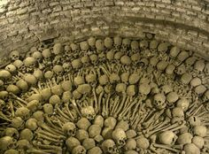 These catacombs are located underneath the Iglesia de San Francisco in Lima, Peru. Being in this space is otherworldly - like being in an Edgar Allan Poe story.