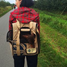 Ausflug ins Alte Land