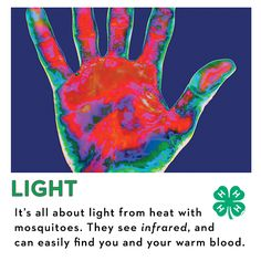 DYK? With bare eyes, we can't see certain wavelengths on the spectrum, called invisible light. But some animals and technologies can.  For mosquitoes, it's all about light from heat. They see in infrared, and easily find you and your warm blood.