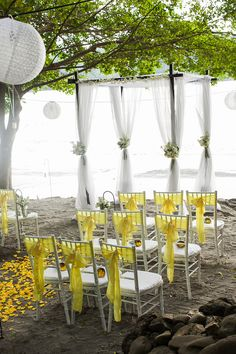 $Green & yellow beach wedding... Wedding ideas for brides, grooms, parents & planners ... https://itunes.apple.com/us/app/the-gold-wedding-planner/id498112599?ls=1=8 … plus how to organise an entire wedding ♥ The Gold Wedding Planner iPhone App ♥