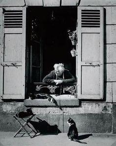 Concierge with Cats Paris cat photography by Brassai - aka Gyula Halasz Old Paris, Vintage Paris, Vintage Cat, Vintage Photography, Street Photography, Cat Photography, Fashion Photography, Chat Paris, Paris Cat