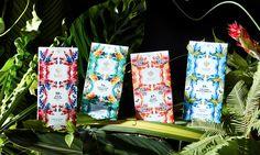 HARPER MACAW CHOCOLATE — The Dieline - Branding & Packaging