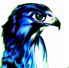 Love my Seahawks! Will be inked at some point in the very near future!
