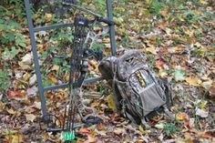 Let's extend Vermont's bow season for deer hunting! Sign the petition!