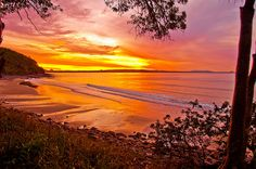 Enjoying a sunset in Noosa, QLD