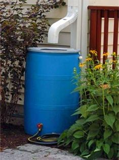 Have fun and save money by living green by creating your own simple rain barrel to harvest rainwater from your roof.