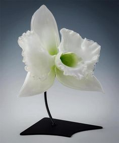 Adorable Large-Scale Flowers Made With Glass on http://naldzgraphics.net