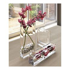 Perhaps a use for my river stones, when I'm not force blooming amaryllis?