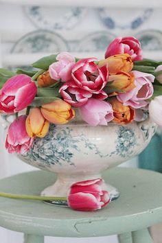 15 januar er det denne vakre blomstens dag ! Tulipaner er så absolutt en favoritt og i disse tider bringer det virkelig et sveip av vår i...