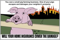 Insurance Trivia Question: You own a small pig farming business. One of your pigs escapes and damages your neighbor's property. Will your home insurance cover the damage? We'll have the answer tomorrow, but feel free to call us any time for answers to insurance questions like this.